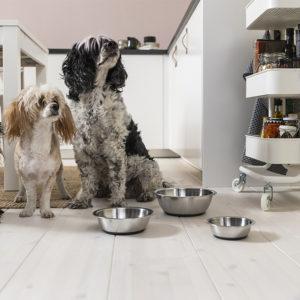 Ikea представила коллекцию мебели и аксессуаров для питомцев